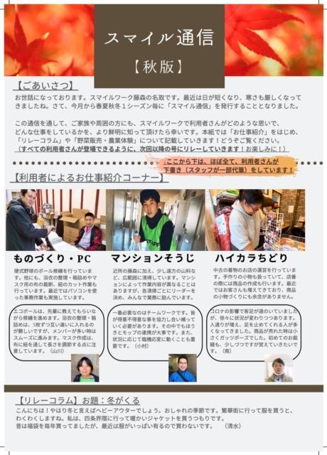 2020年 秋版茶色 ミニマリスト ファッション メールニュースレター (5)